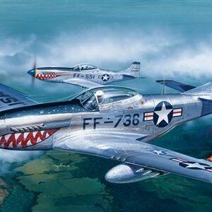 F-51D Mustang 1/1