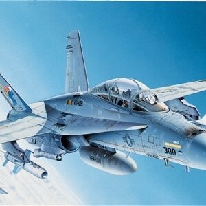 F/A 18 Hornet 1/1
