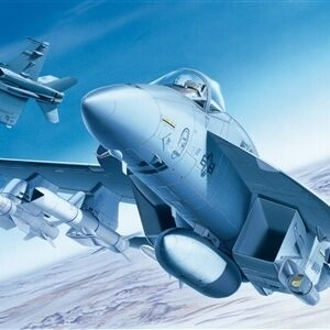 F/A-18E Super Hornet 1/1